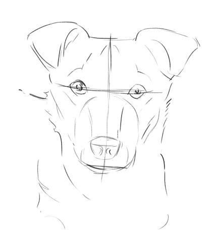 drawdog3b.jpg