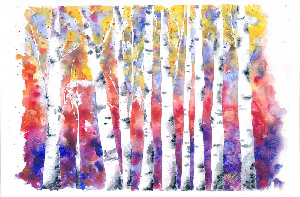 BirchTrees.jpeg