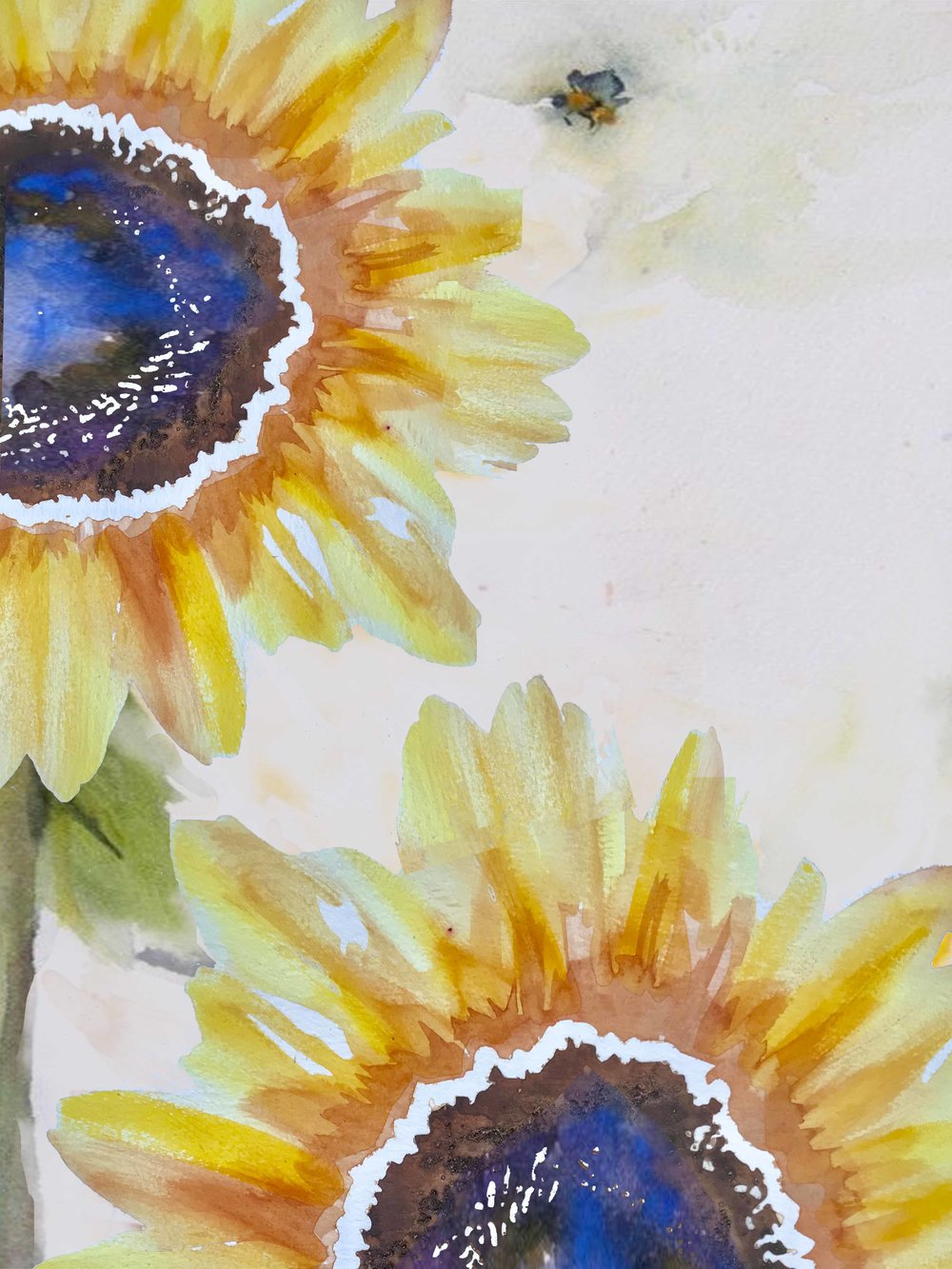 Double Sunflowers