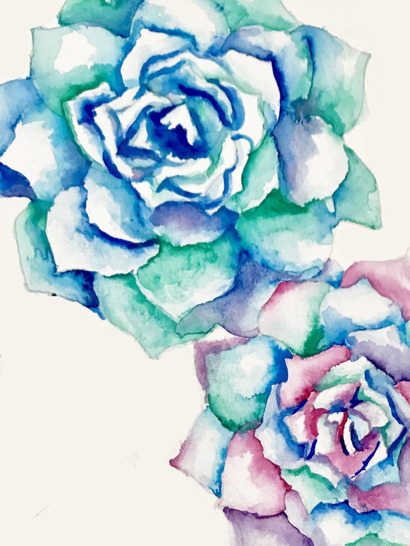 Succulent v2.jpg