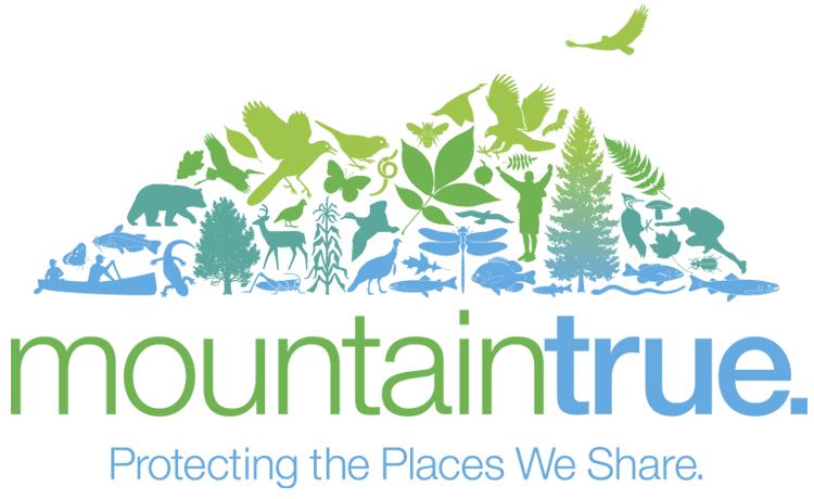 mountaintrue_logo_tag_12 (1).14_750x460transp.png