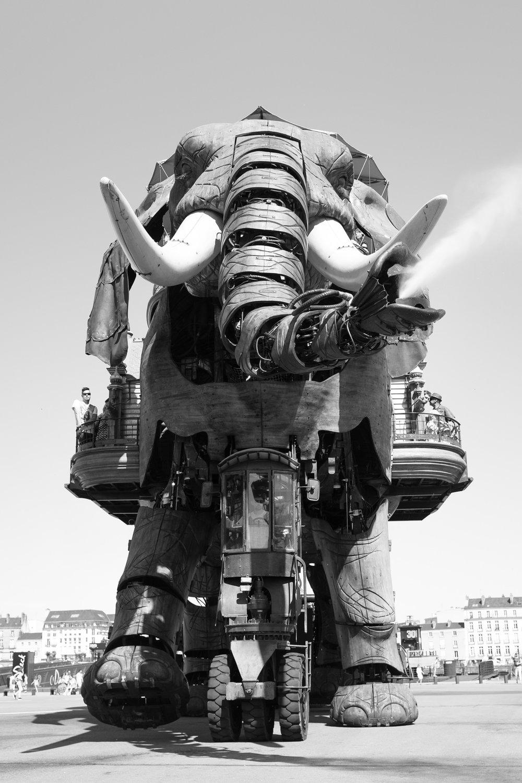 1364-pays-de-la-loire-architecture.jpg