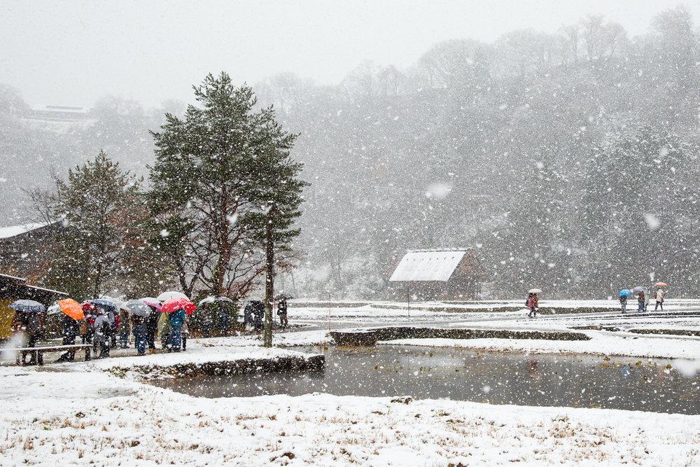 5627-japan-nature-cold-winter.jpg
