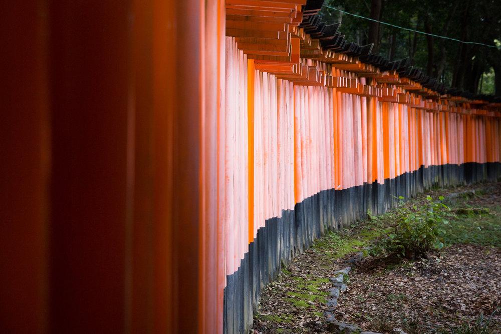 5327-japan-urban-orange-gate.jpg