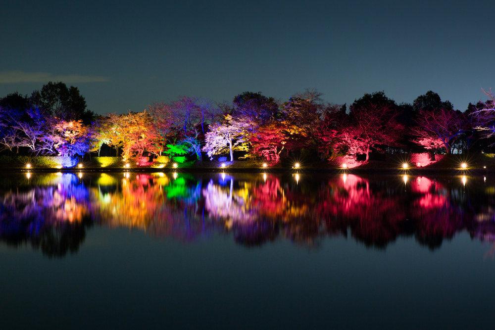 4789-japan-nature-autumn-colors.jpg
