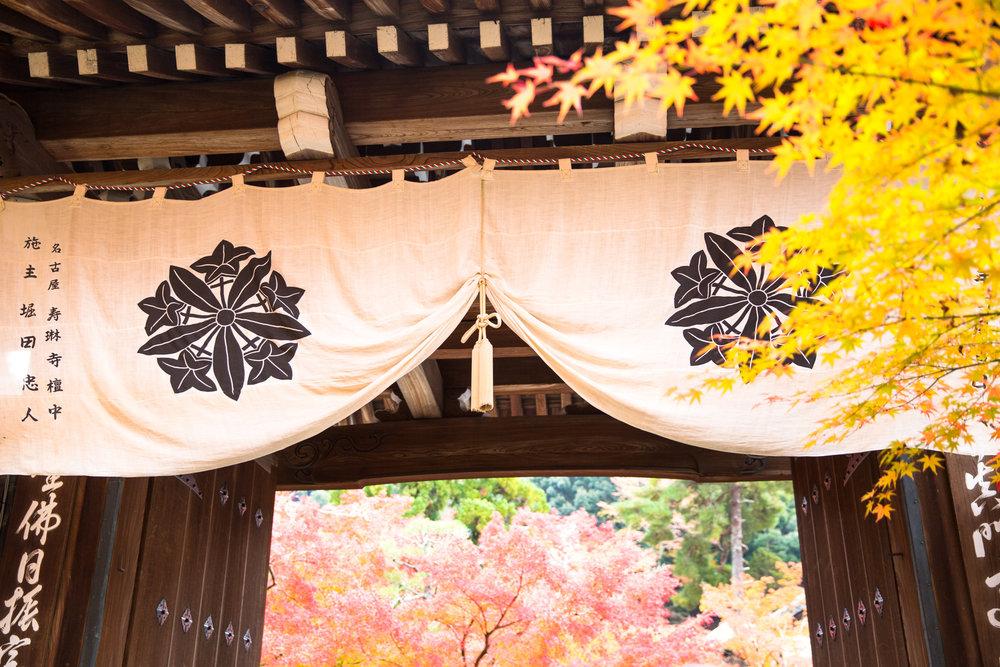 5188-japan-nature-cold-winter.jpg
