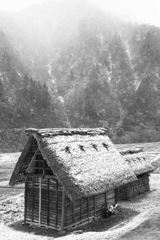5543-japan-nature-cold-winter.jpg