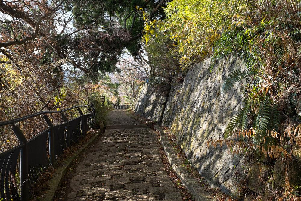 8634-japan-nature-classic-perspective.jpg