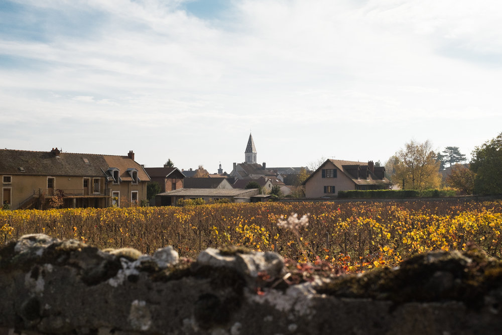 6665-nature-bourgogne-landscape.jpg