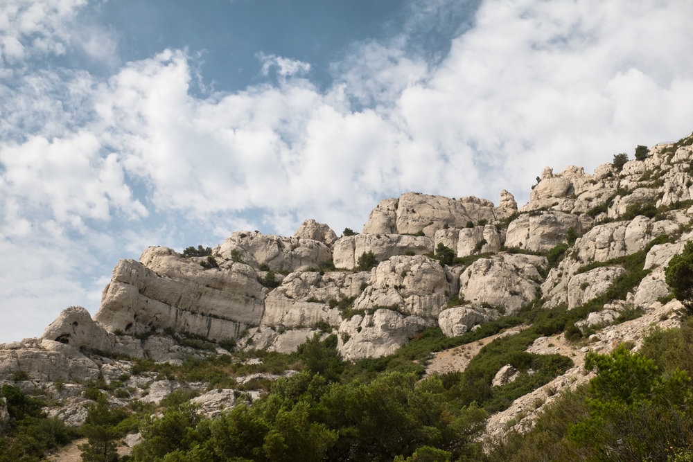 2852-nature-provence-marseille.jpg