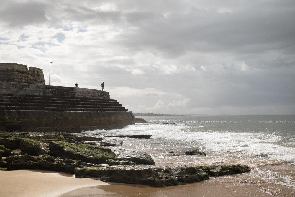 4719-portuguese-summer-nature.jpg