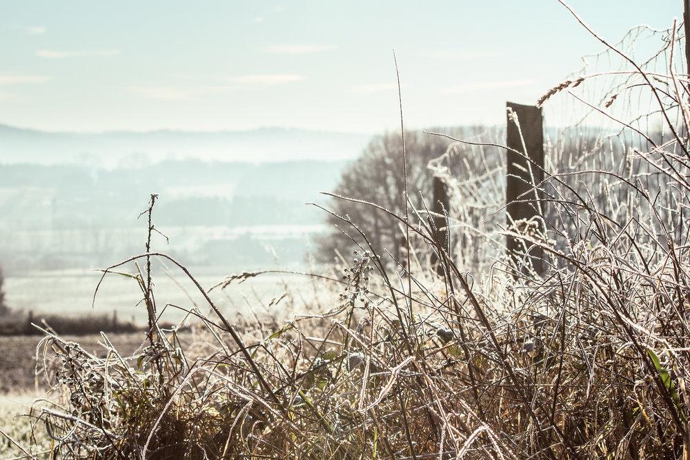 -north-rhine-westphalia-best-nature-walks-3.jpg