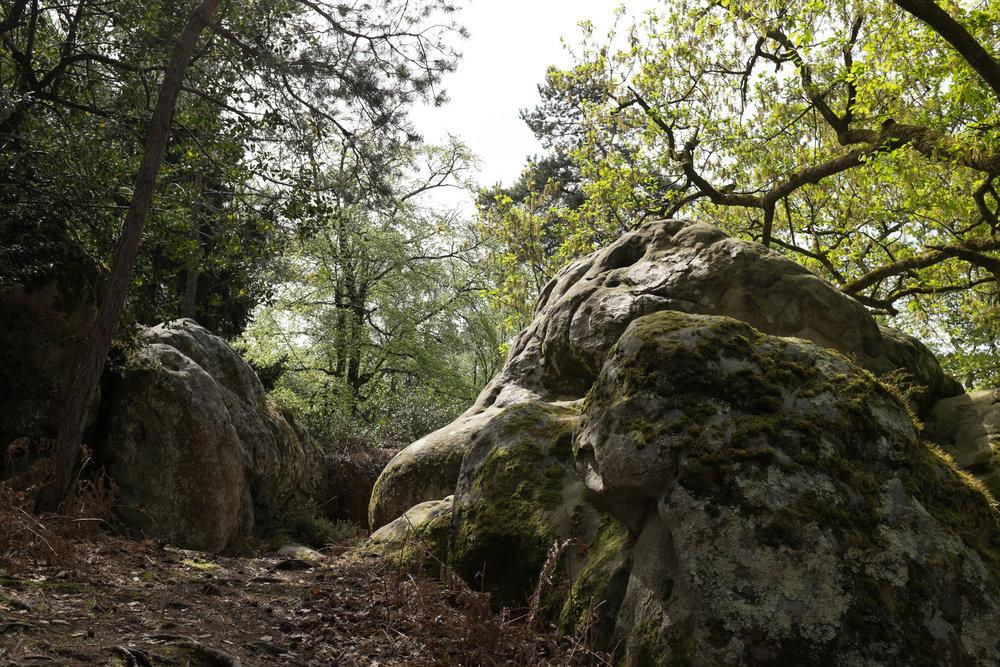 9367-nature-boulder-canyon.jpg