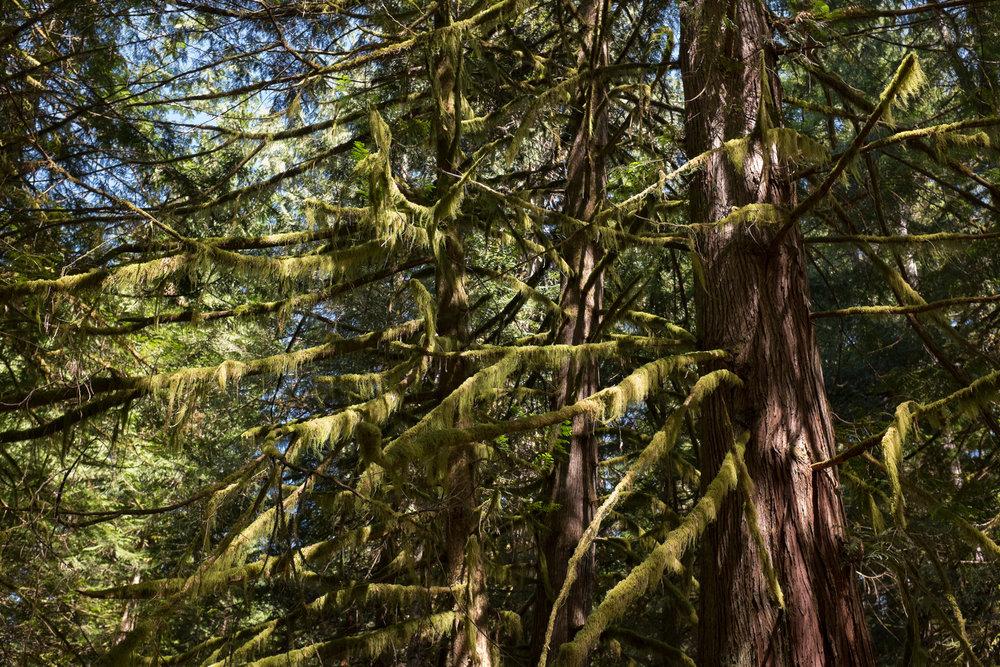 1697-best-canada-nature-spots.jpg