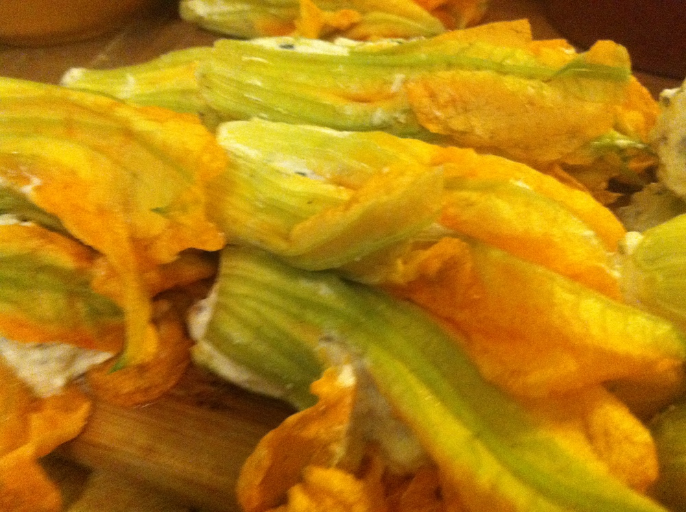 stuffed squash blossoms.JPG