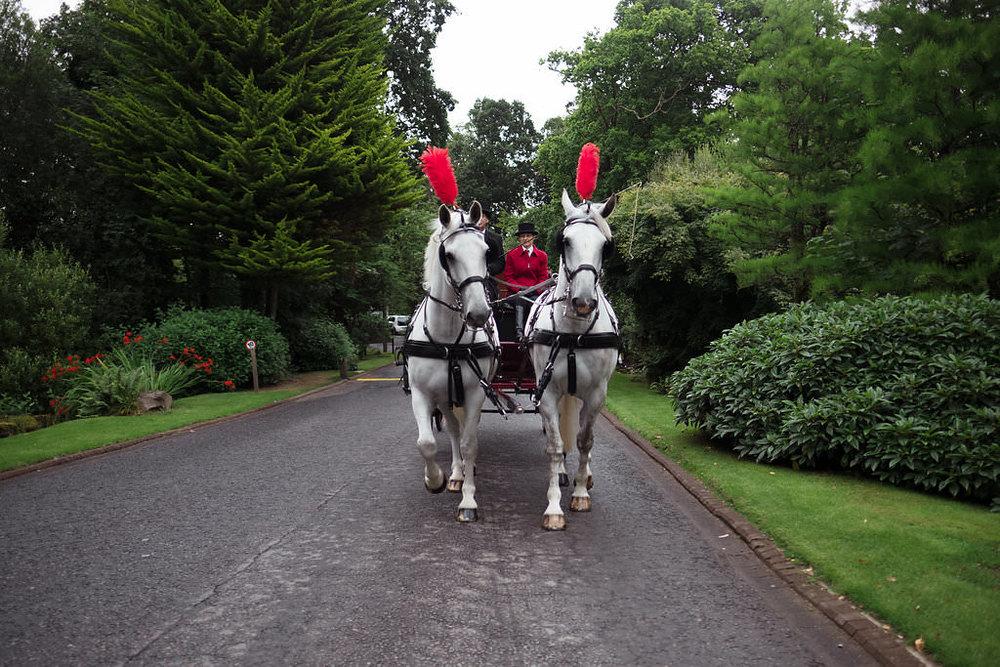 Wedding Horse & Carriage, Loch Lomond image by Doran Photography