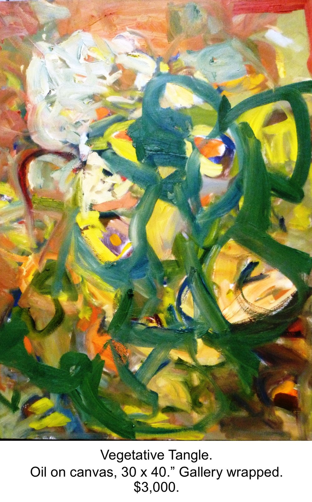 Fred Wise, Vegetative Tangle. Oil on canvas, 30 x 40, 2016, gallery 2.jpg