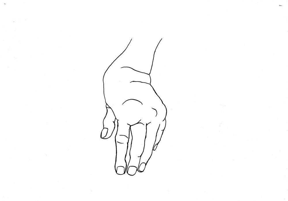 Marion Wintrebert artiste série dessins étude inventaire non-exhaustif de déviations