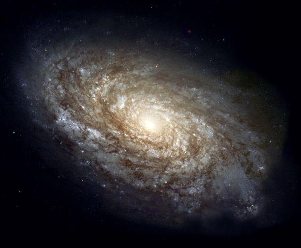NGC_4414_(NASA-med)_resized.jpg