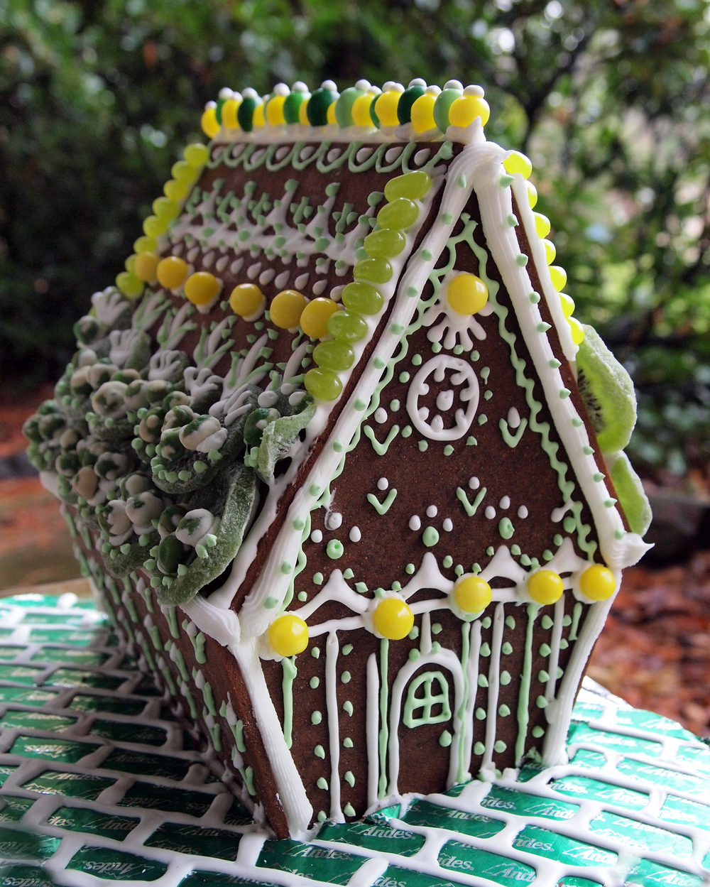 green_gingerbread house.jpg