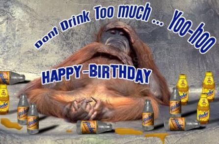 37 Monkeys for Mena Ryans Thoughts – Funny Monkey Birthday Cards