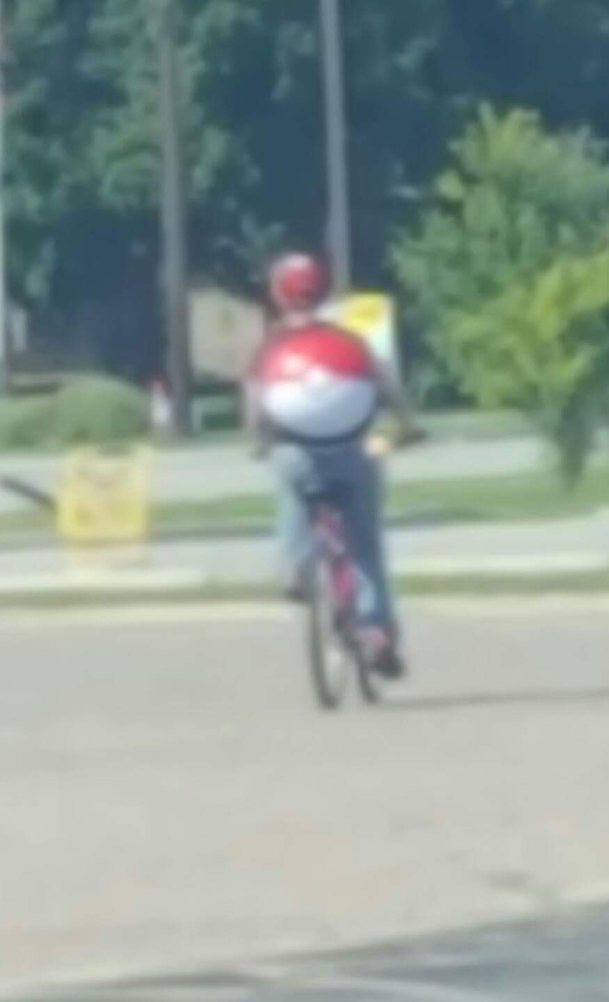 Here we see a loyal Pokemon Go CIA drone hard at work.