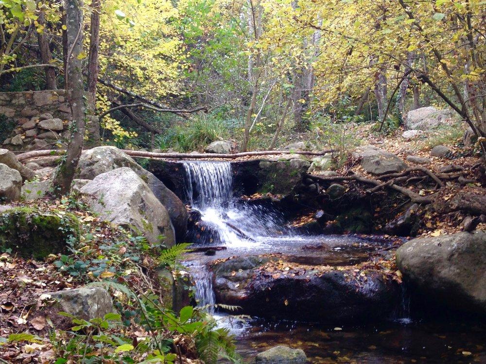 Montseny Natural Park outside Barcelona
