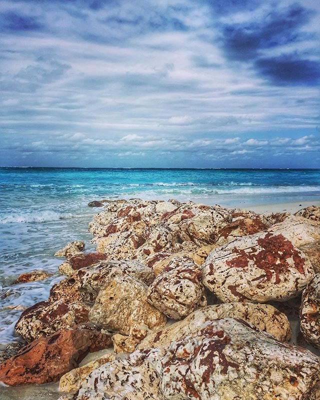 Excited to spend the upcoming holiday weekend in Grand Cayman! Post your recommendations in the comments 🙏😘#firstmonthabroad . . . #expat #expats #grandcayman #sevenmilebeach #travel #travelblogger #lovethisplace #islandlife #beach #beachside #stingray #stingraycity #vacation #vacationmode #holiday #mdw #mdw2018 #holidayweekend #longweekend #recommendation