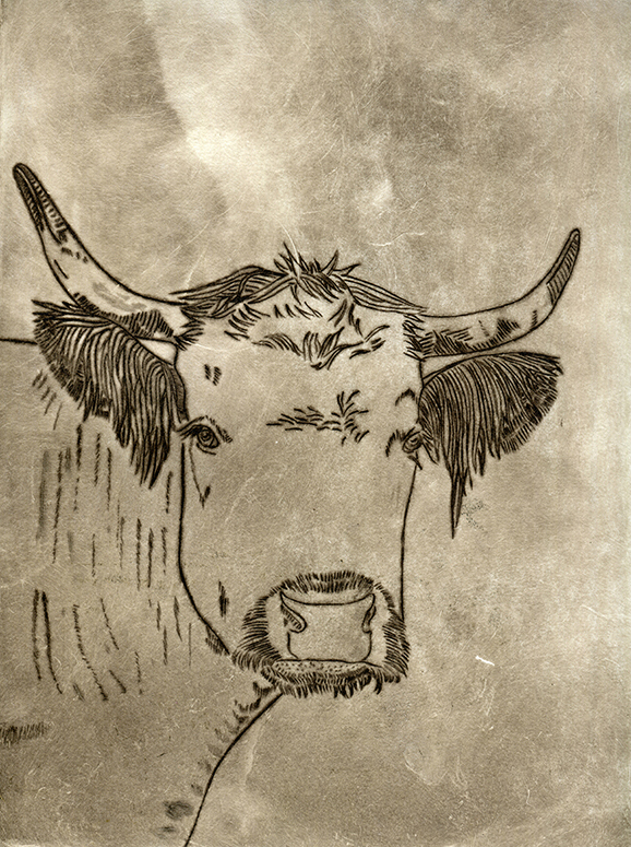 Printmaking_Etching_art_Design_Cow.jpg