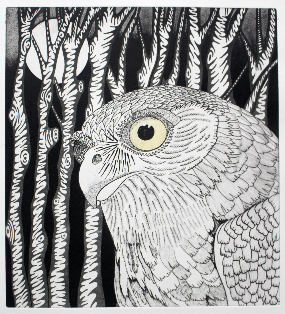 Printmaking_Art_Design_Etching_Owl.jpg
