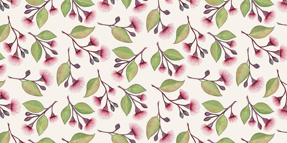 Flowering Gum -