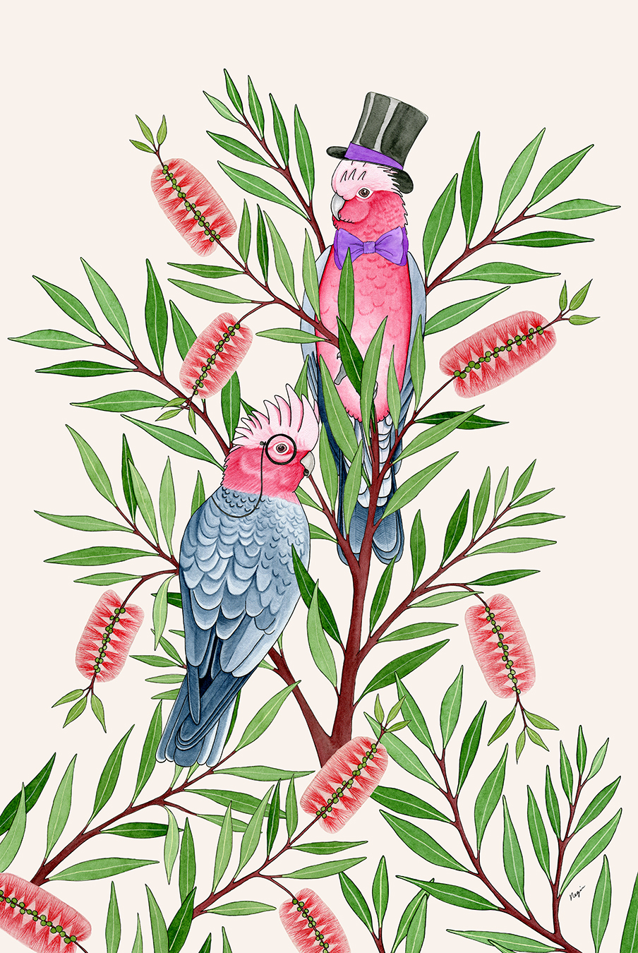 Australian Native Print Ovolo the Valley