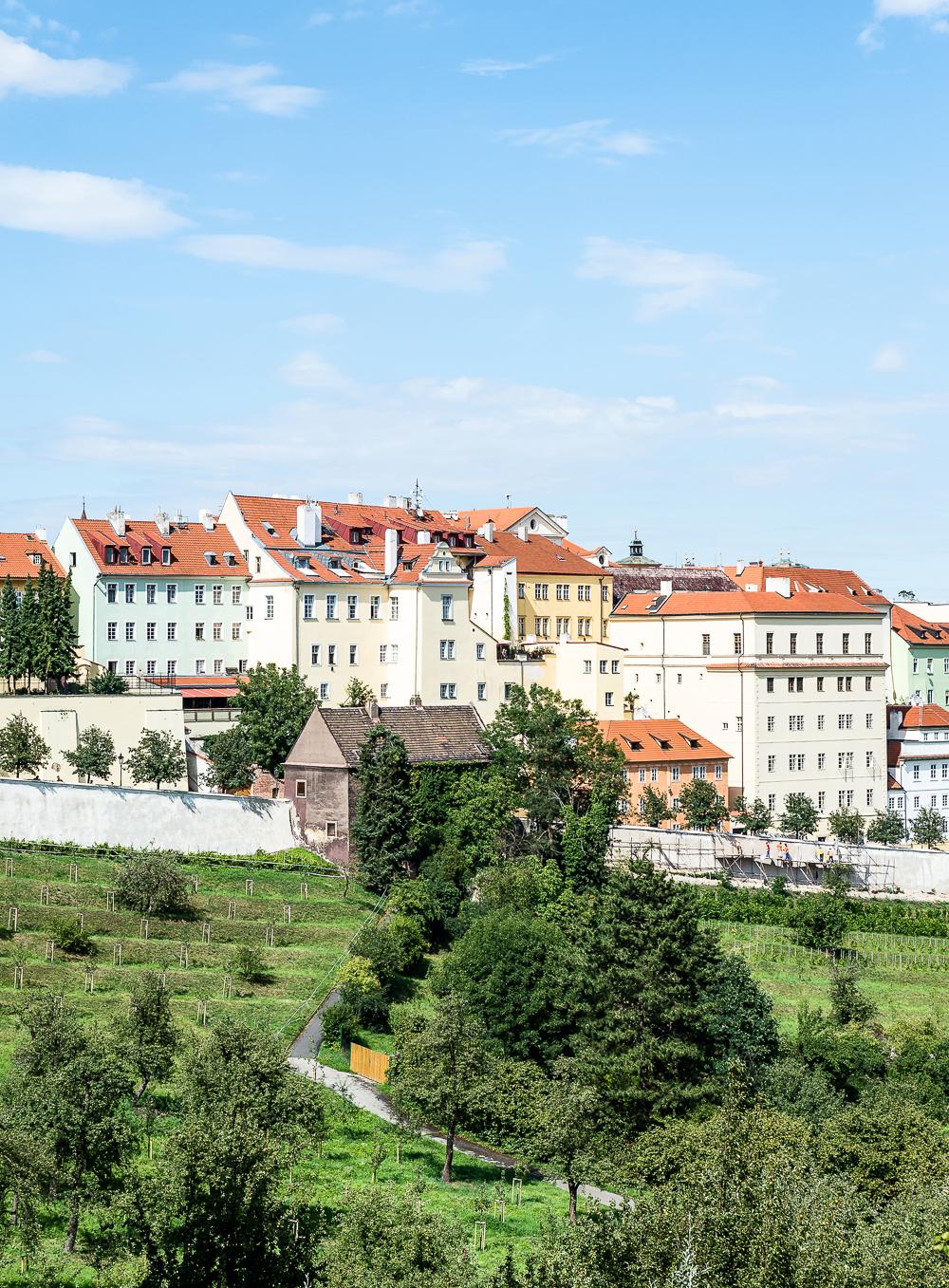 PragueWeb-20.jpg
