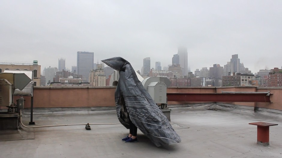 Melissa Deerson  ,   Pigeon Project  , 2014.   Image courtesy and   © the artist