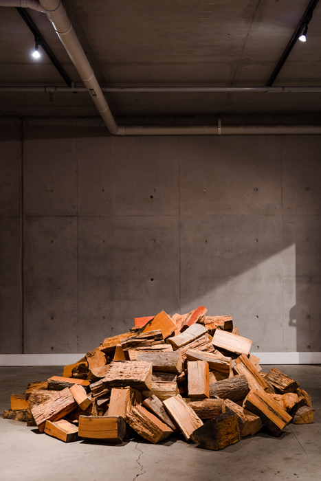 Christine McMillan  Firewood: One Tonne  2015. Courtesy the artist