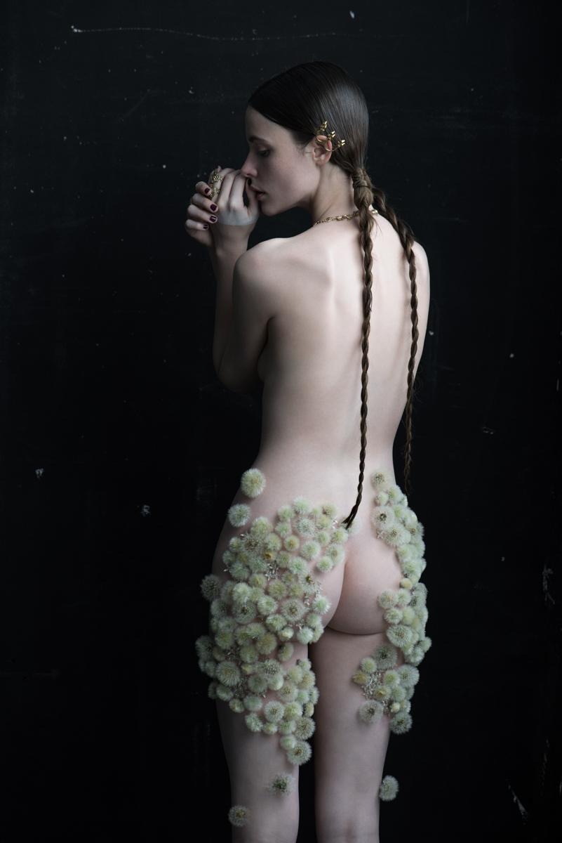 Dandelion #0, 2014, 83.4 x 120 cm/ 104 x 150 cm