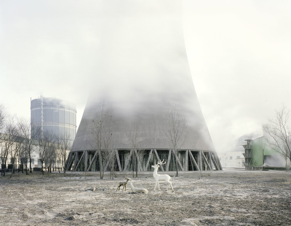 White Deer under a Cooling Tower, Inner Mongolia, 2011