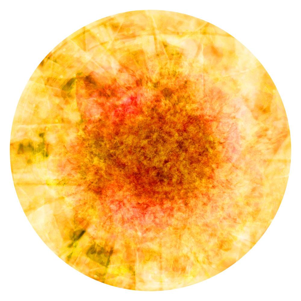Eclosion-N - 10 x 10 cm.jpg