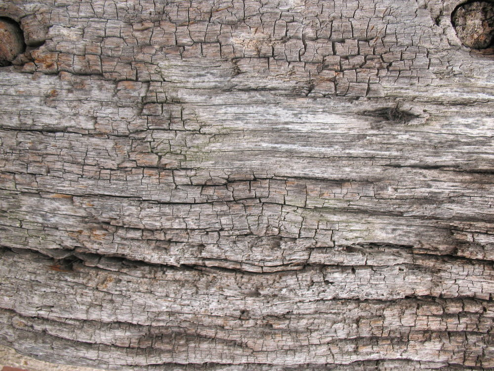 Wood_texture_3_by_Tigg_stock.jpg