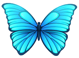 butterfly_05.png