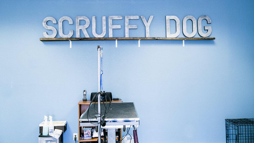 Scruffy Dog (50 of 52).jpg
