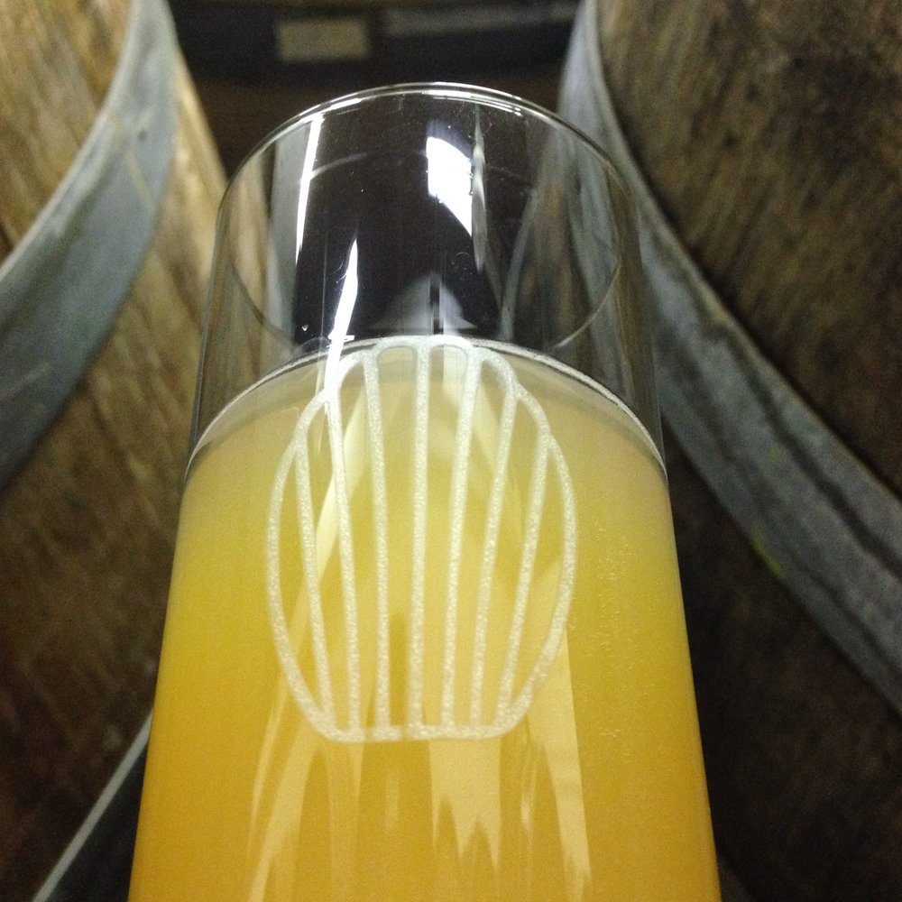 Jung [Single Varietal Dry-Hop] - Our Jung base, dry-hopped for complementarity with a single illustrative hop variety, including, to date: Mosaic, Amarillo, Hallertau Blanc, and Galaxy.