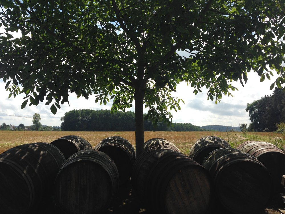 Barrel retirement in the summer shade outside of Brouwerij Girardin.