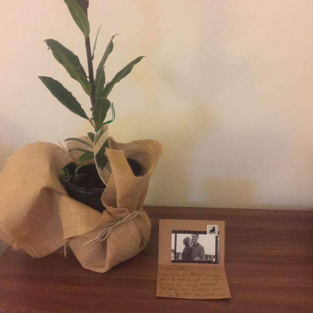 What a pleasure it was to cater Lis and Al's wedding in Maldon last night. They even got me a little bay leaf tree, such a beautiful gesture from a beautiful couple 😃🌿