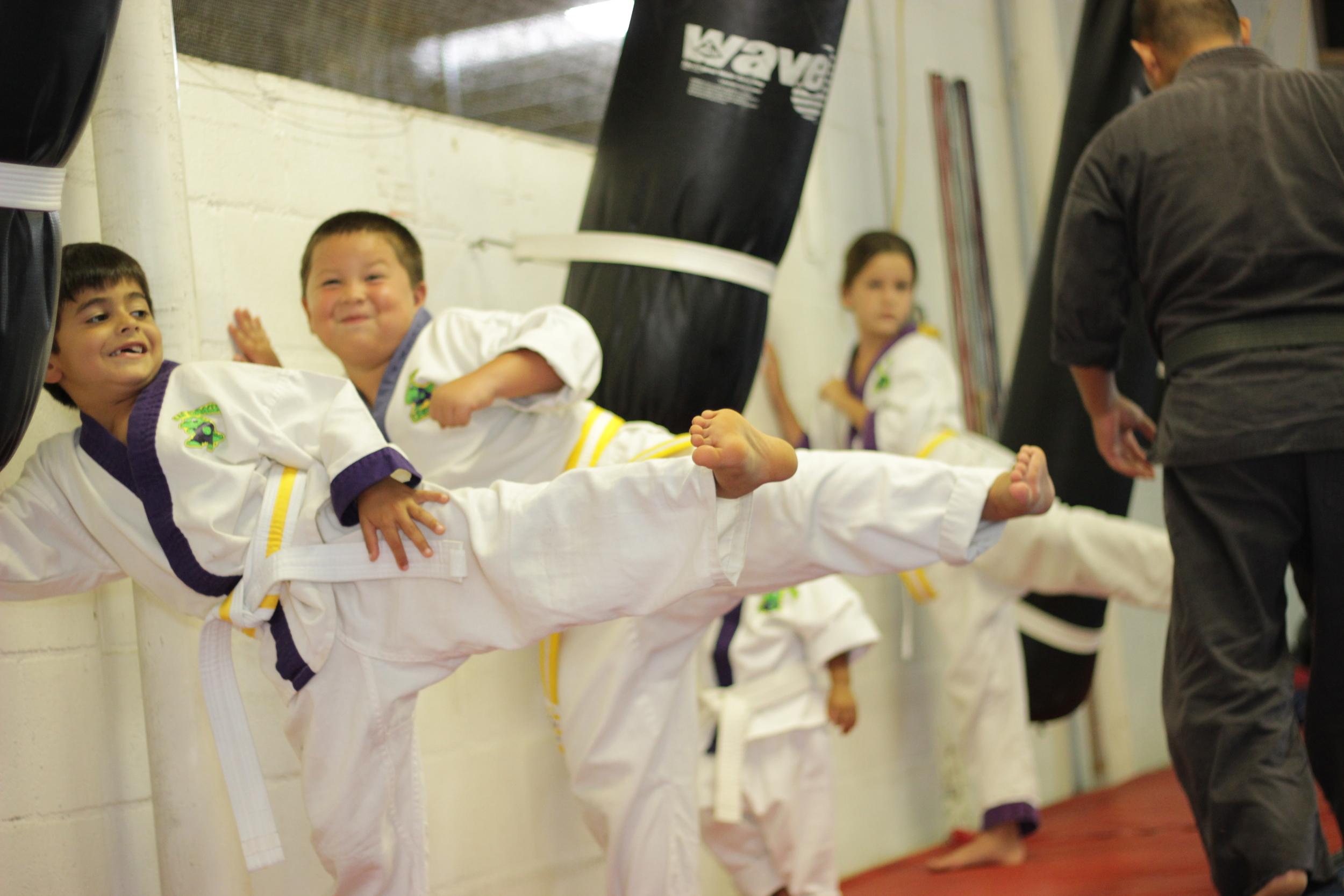 New life martial arts