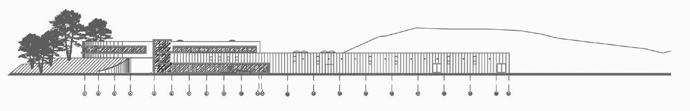 graf (2)sp.jpg
