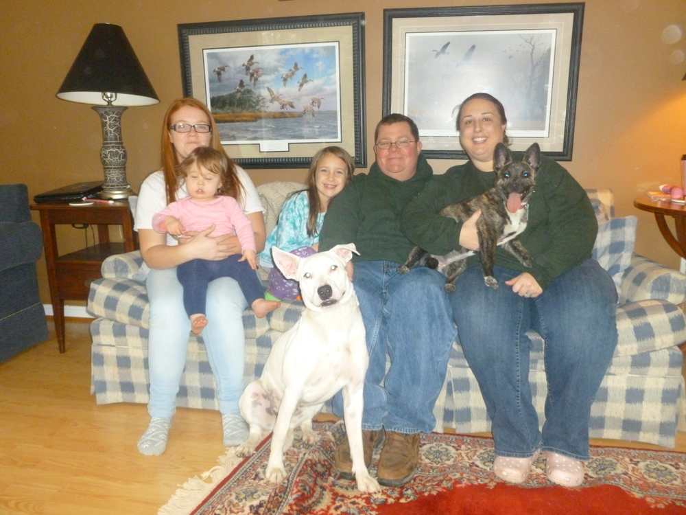 The Rodger's Family adopted Luna (white) and Lexi (brindle). <3
