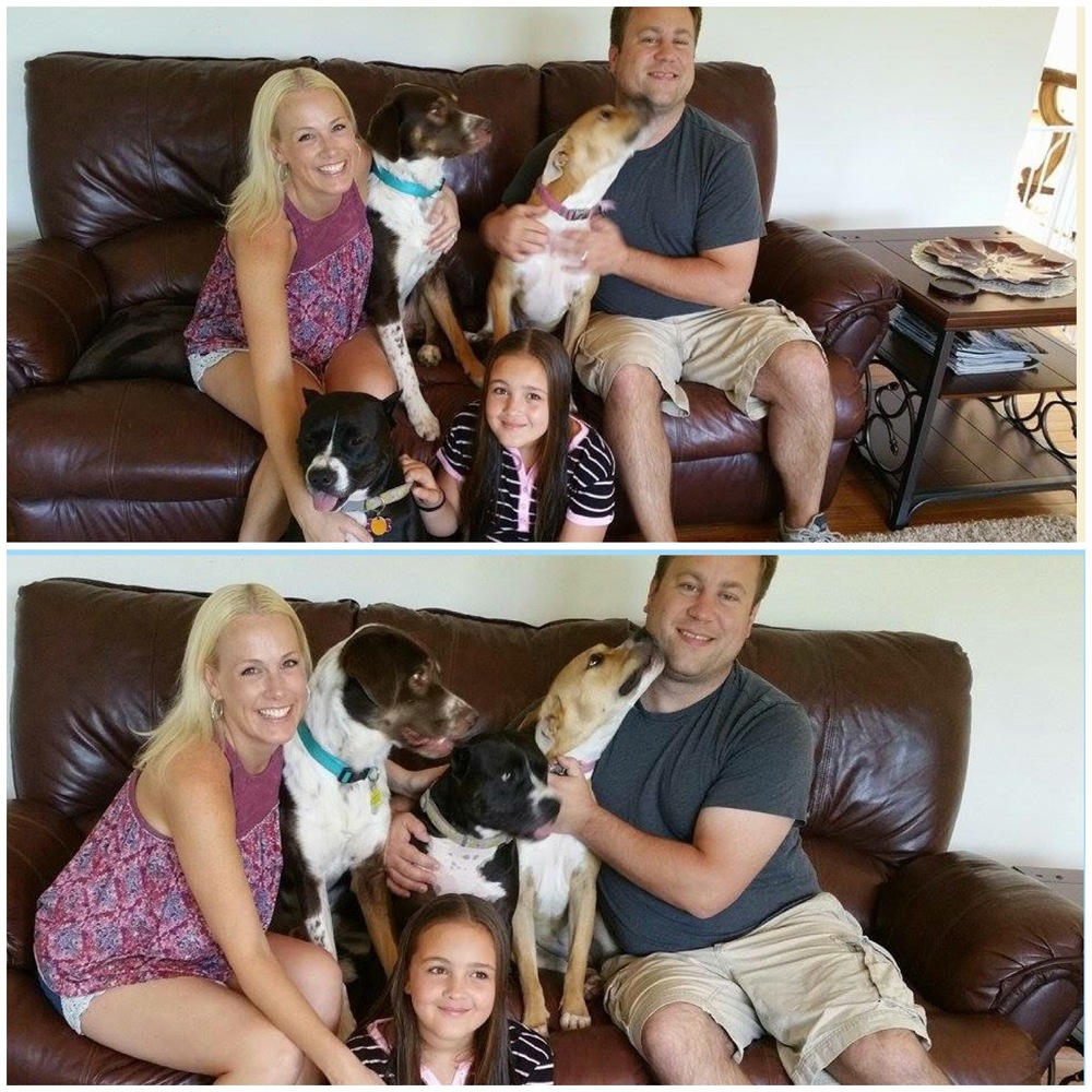 The Foster family decided Duke fit into their family too well to be adopted by anyone but them!
