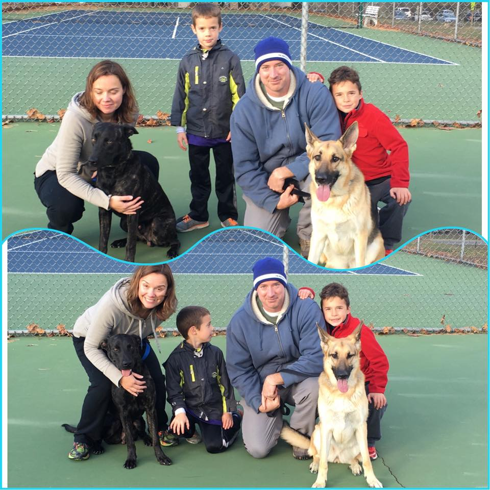 Dodger (left) is exactly what the Chieffo family was looking for in their new furry family member!