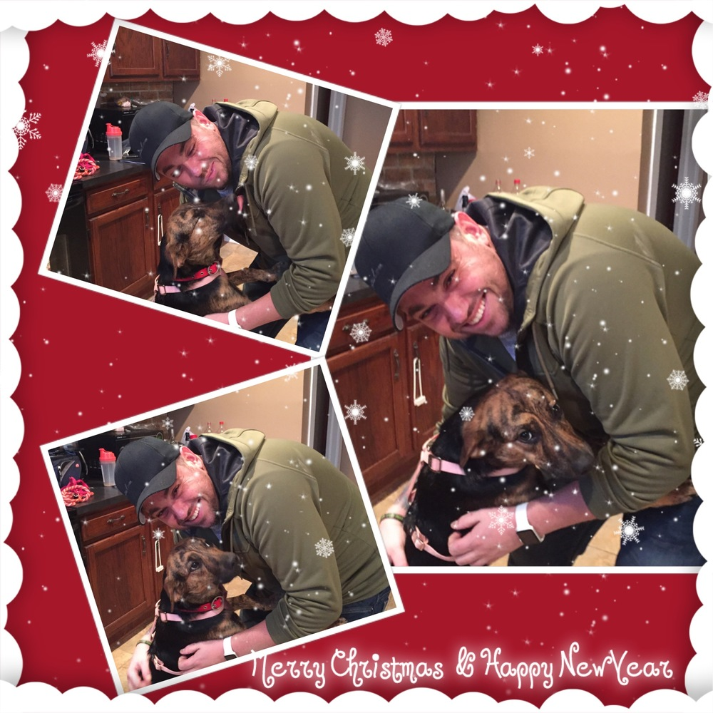 Ember got the best present ever for Christmas, a furever home!!